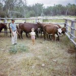 Vacen Taylor - with my grandfather and the cows